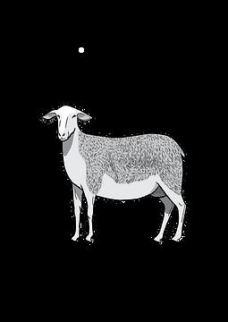 logo Armand & Marie sans titre.png