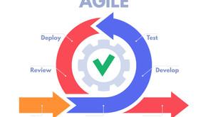 Agile Operating Model & Organisation