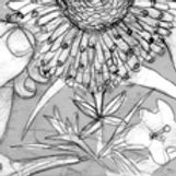 Pencil sketch 3.jpg