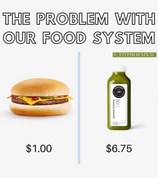 The Problem with our Food System.