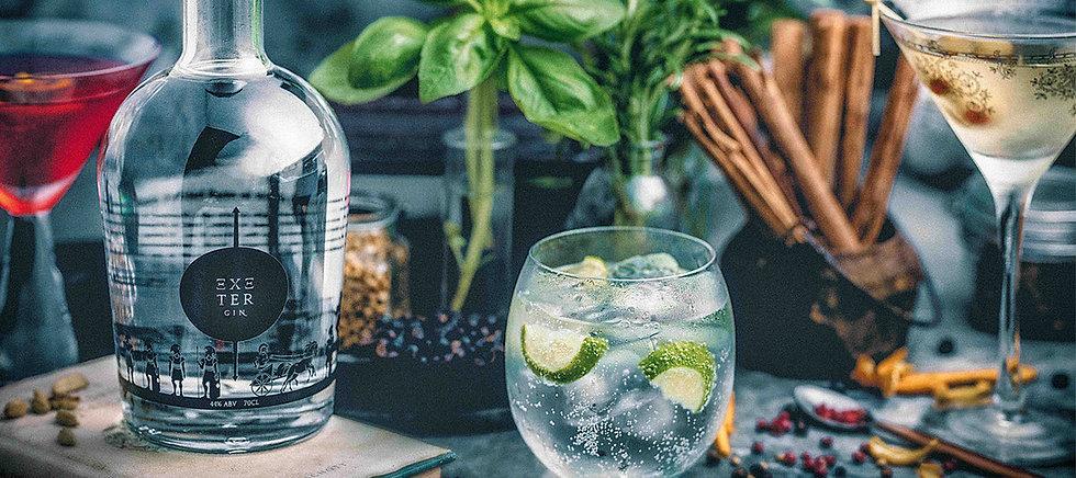 Exeter-Gin---High-Quality-Gin.jpg