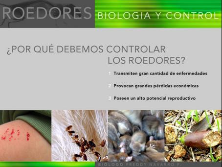 ¿Por qué se deben controlar los roedores?