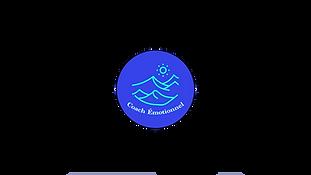 logo refait 2.png
