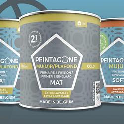 Logo Peintagone Website.PNG