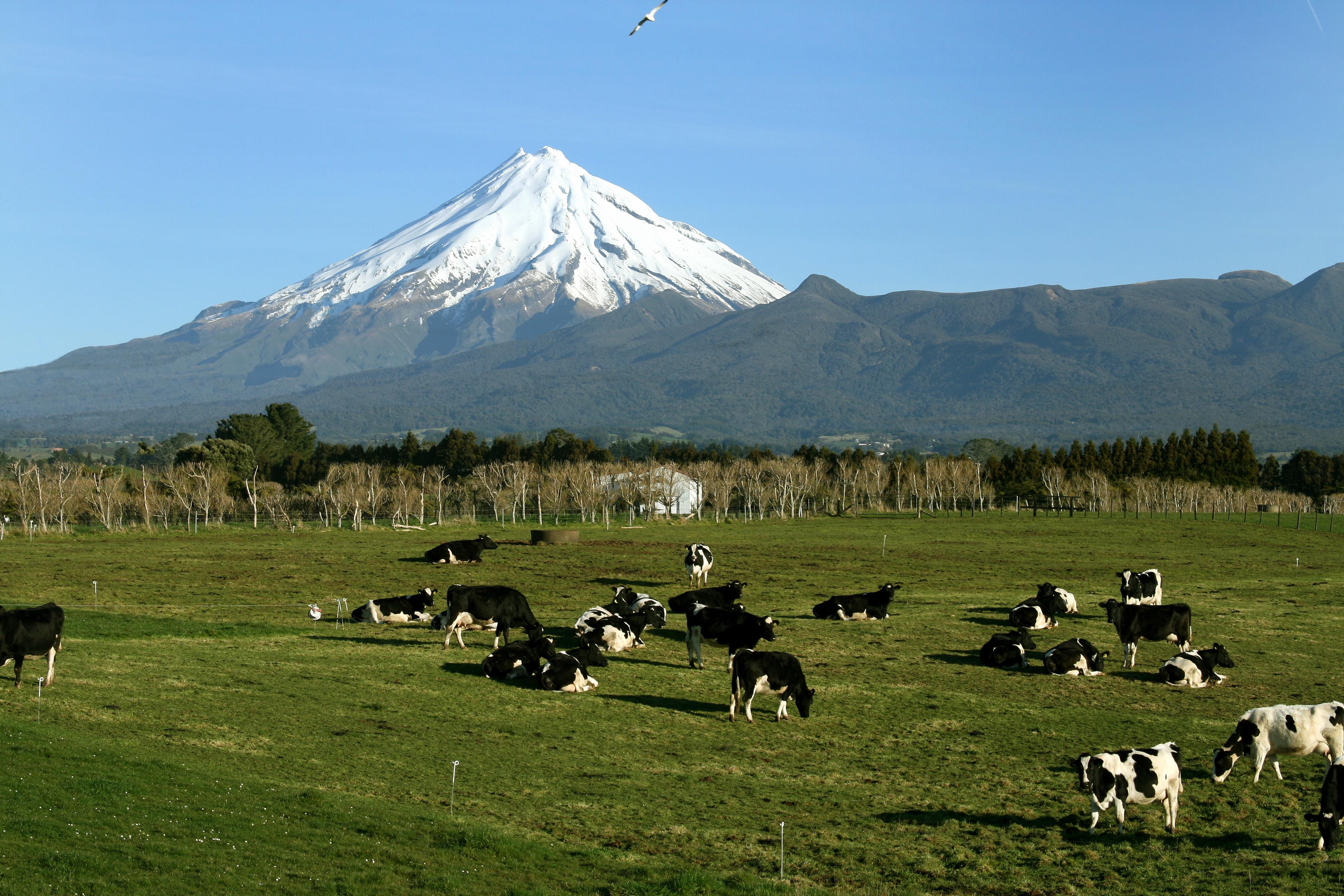 Dairy Farmer Survey