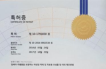 특허증.jpg