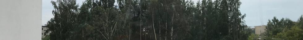 вид на улицу Вишневая, будущий двор