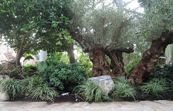 D.1. European Garden. 1.
