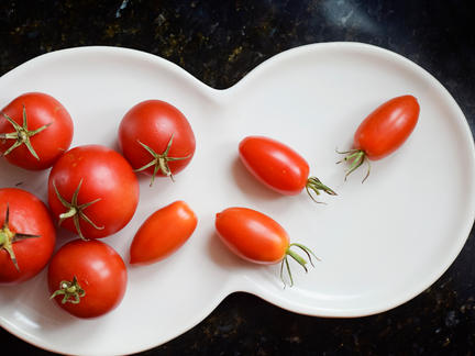 Organic Foods Photography Collection: Cherry Tomatoes