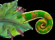 Chameleon-6.png