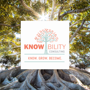 Knowbility Consulting