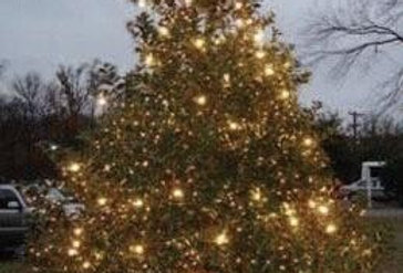 Light Up A Life Remembrance Tree Lights