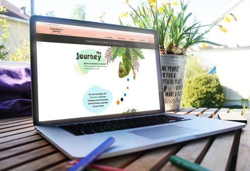 Website design for a local non-profit