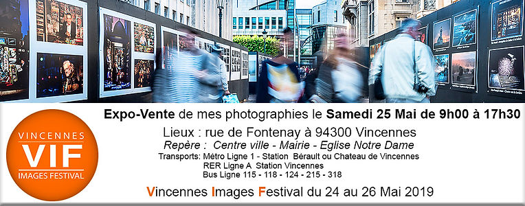 festival-exposition-vente-VIF2019-vincennes france