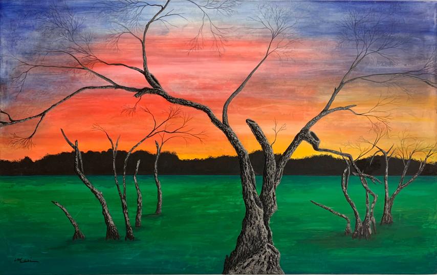 """""""Swamp Tree"""""""