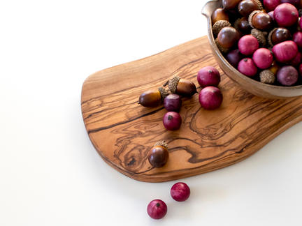 Organic Foods Photography Collection: Cranberries