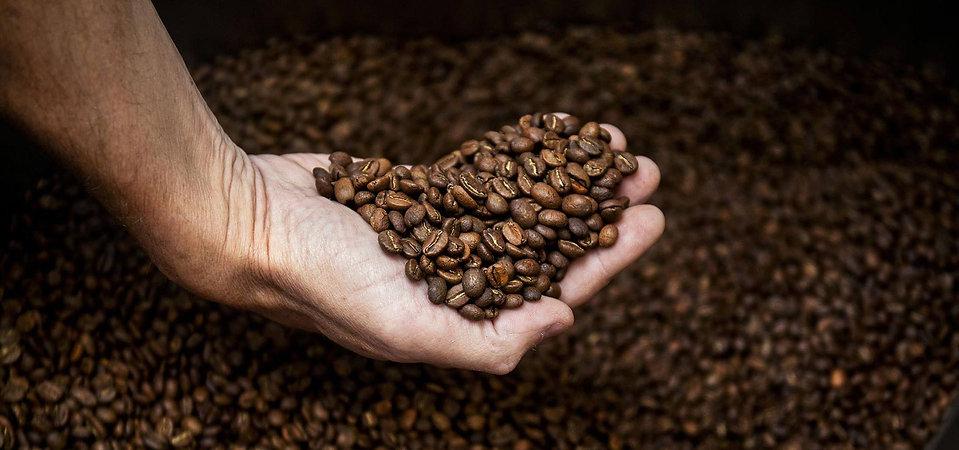 beanshand_1920.jpg