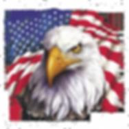 eagle n flag transp.png