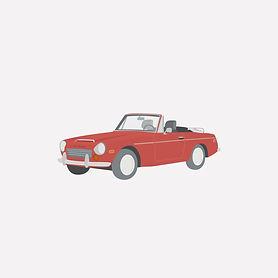 car_1.jpg