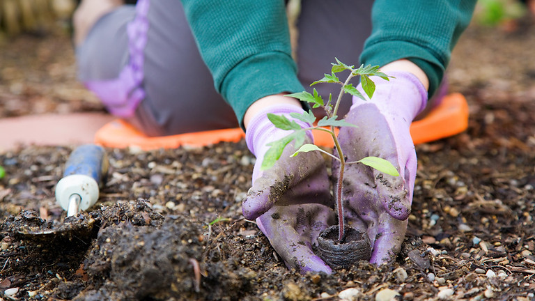 NDPC Gardeners Informational Meeting