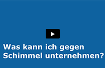 Video Schimmel
