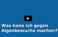 Video Algenwuchs