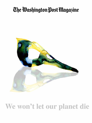 Re-imagined cover artwork for The Washington Post Magazine - conceptual artwork created to provoke thought and ignite action on Climate Change.