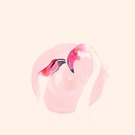 Flamingo_webiste_Cream copy.jpg