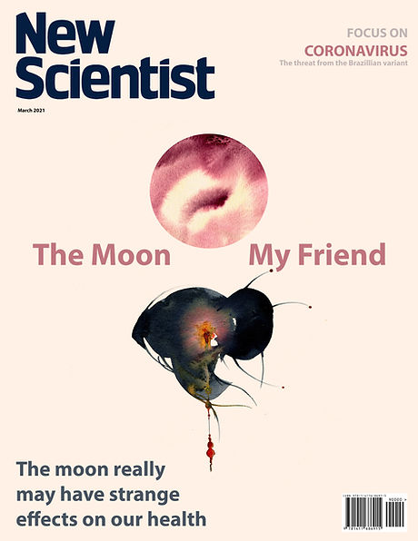 NS Moon Cover.jpg
