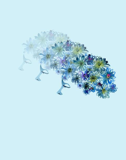 A Beautiful Mind Blue