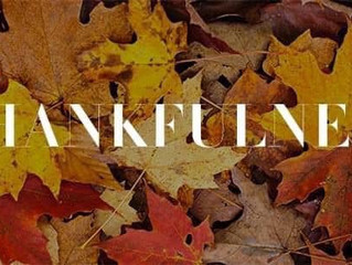 7 days of Thankfulness
