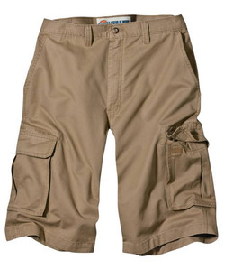 Short Dickies WR545