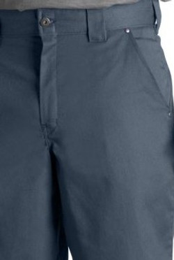 Short Dickies WR877