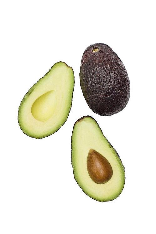 Avocado mogen EKO /st