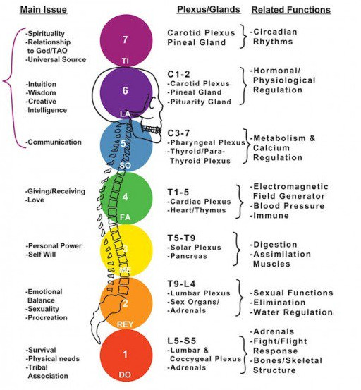 Despoina Chatzimichalaki. The Chakras in Integrated Healthcare. How Chakras affect the organs. Dr Vikas Pandey