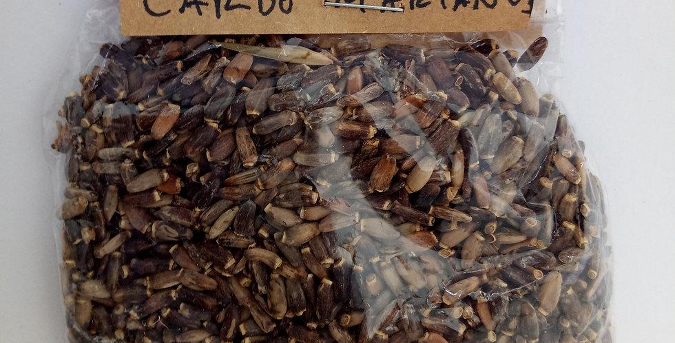 CARDO MARIANO x 40 grs.