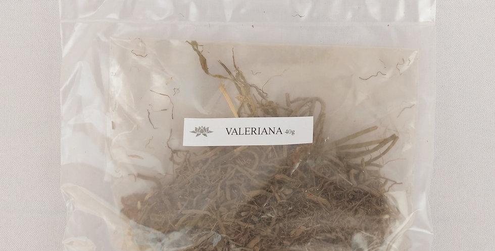 VALERIANA x 40 grs.