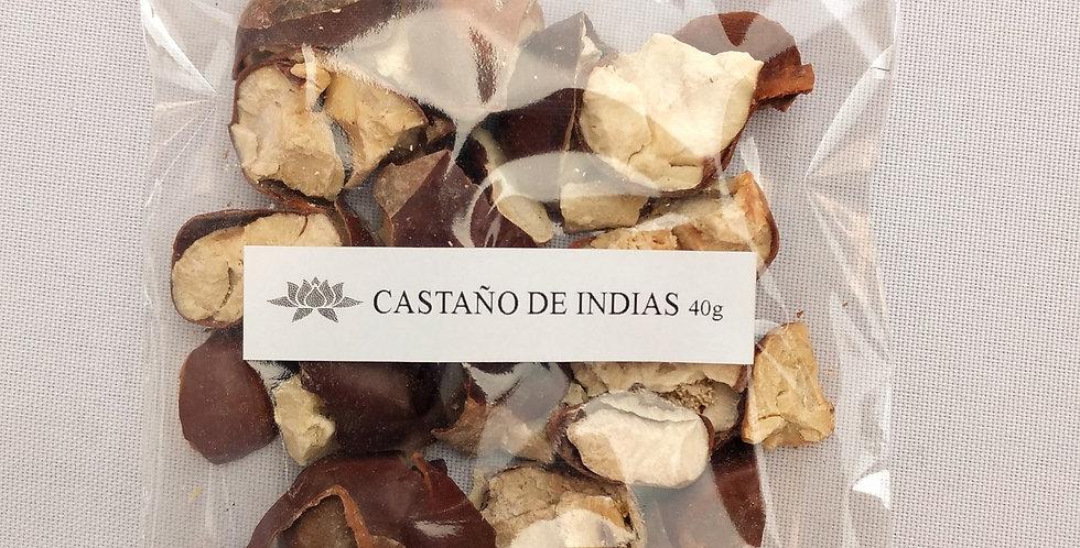 CASTAÑO DE INDIAS x 40 grs