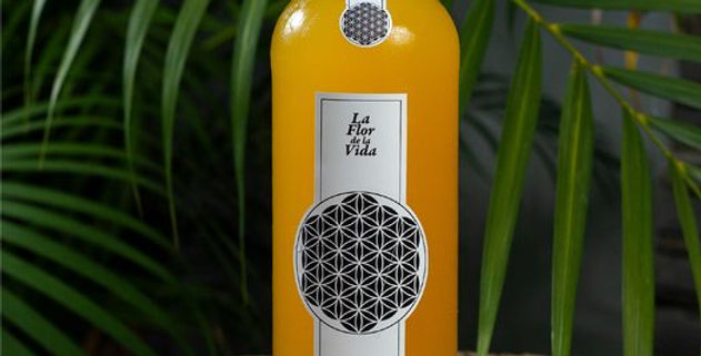 KEFIR La flor de la vida x 910 cc