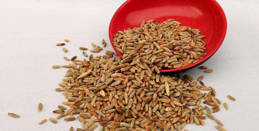 CENTENO Semilla orgánico x 400 grs.