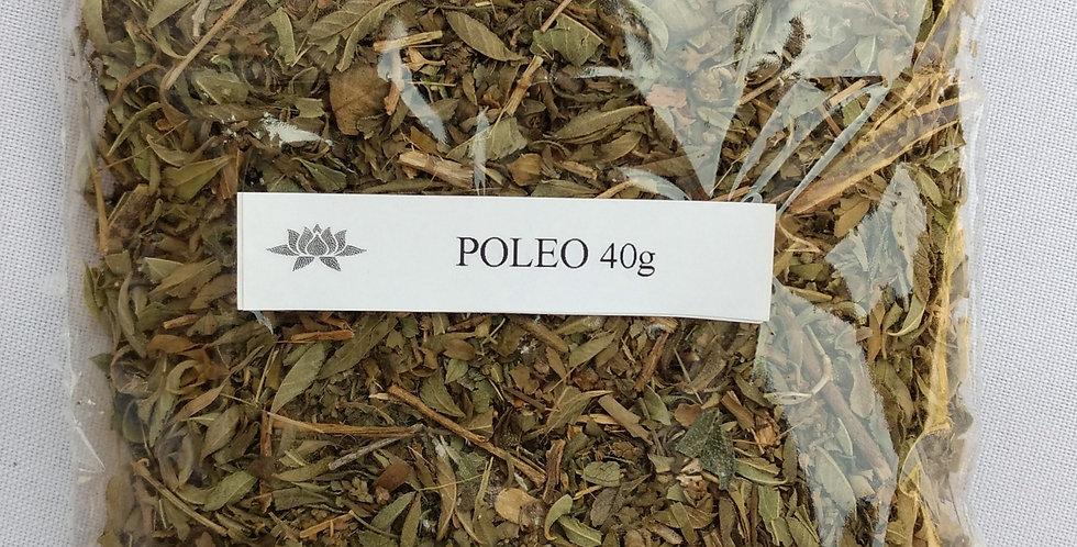 POLEO x 40 grs.