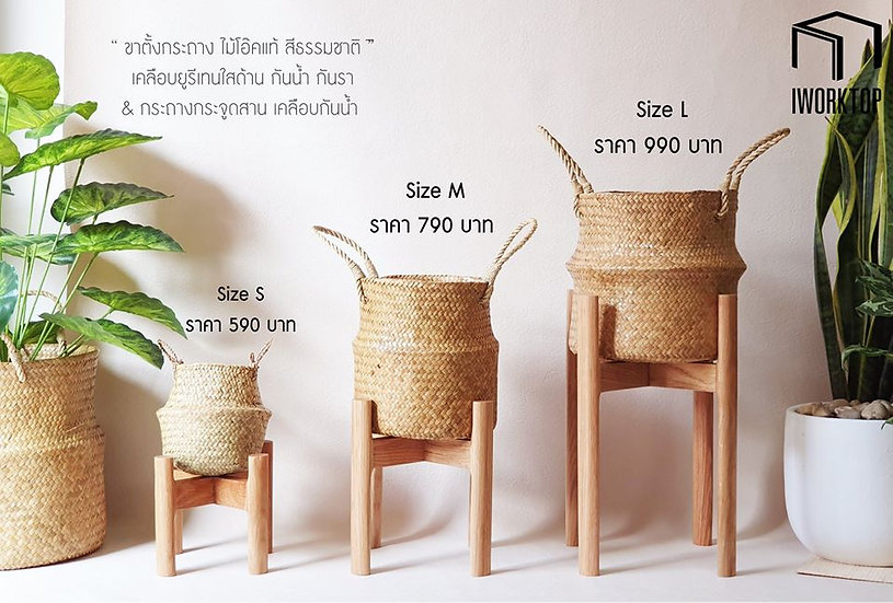 "Potter: ""Oak stand with Krajood pot""  Set"