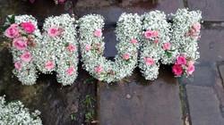Gypsophillia and pink rose Mum