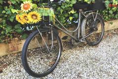 16 dicembre 1943, una bicicletta porta ancora oggi i segni del bombardamento all'Arcella