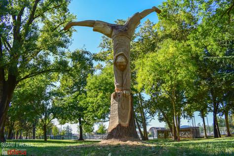 La rinascita degli alberi attraverso la scultura