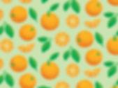oranges-dribbble_1x.jpg