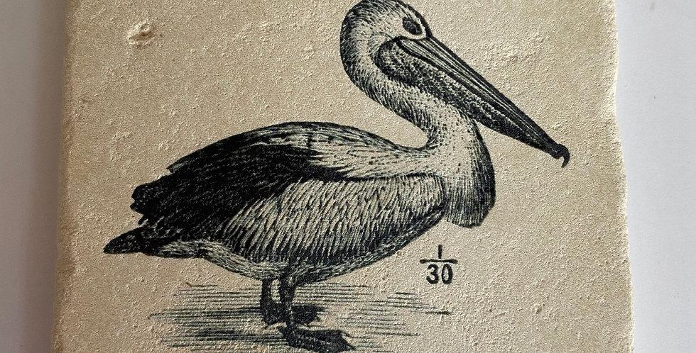 Pelican Coaster