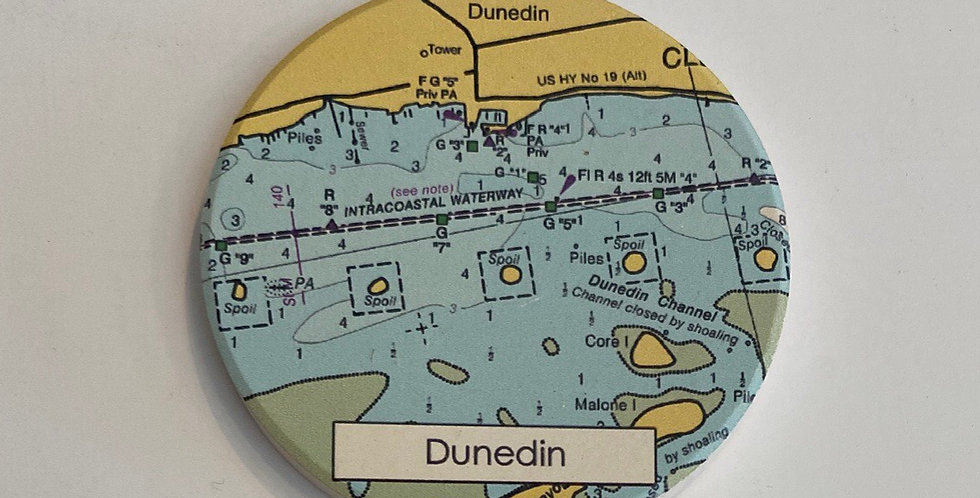 Dunedin Coaster