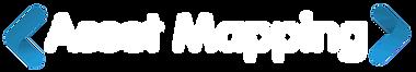AssetMapping logo CLR WHITE.png