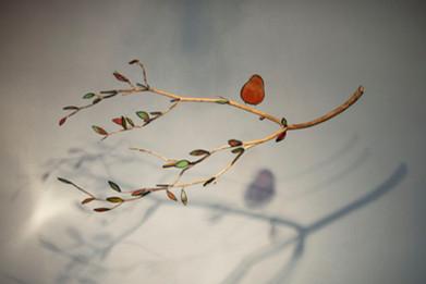 l'oiseau sur sa branche.JPG